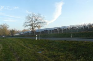 2016-12-12-solarpark-am-rhein-4