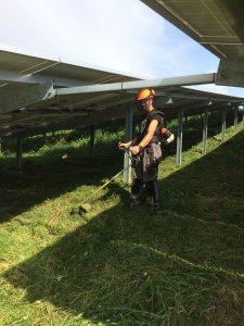 Solarpark am Rhein 1
